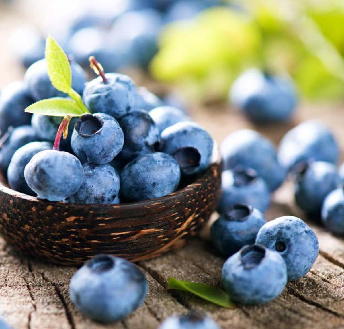 Floida-Blueberries