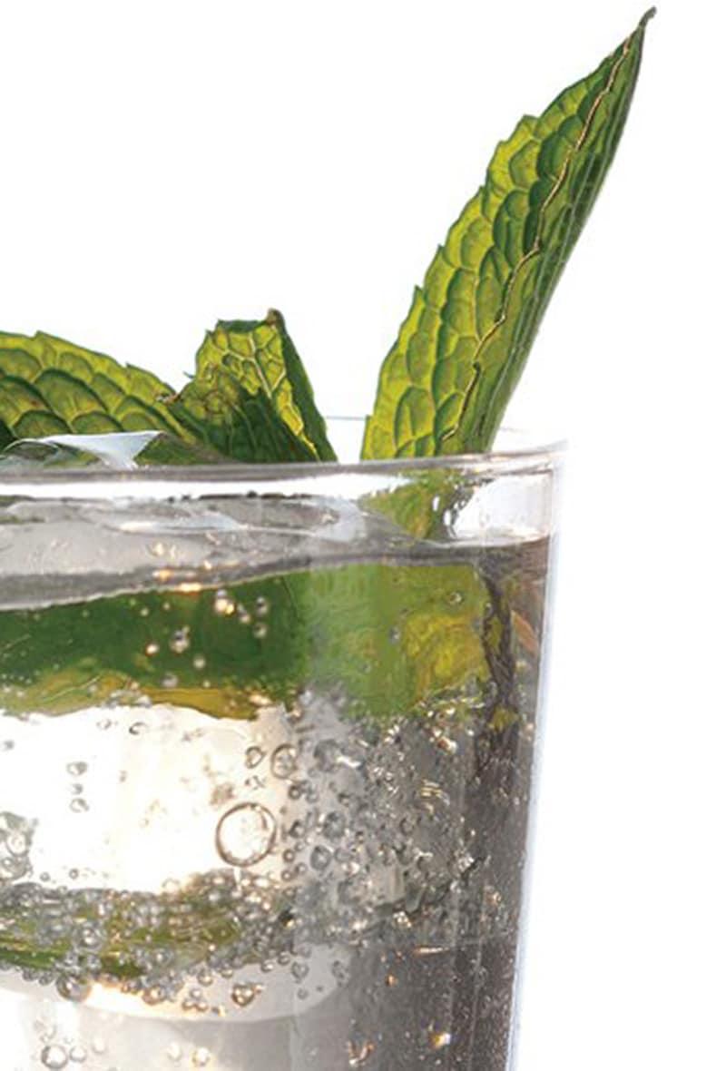 cucumber-mint-and-basil-soda